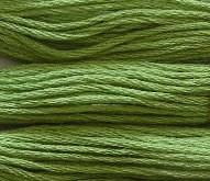 624 - zelená